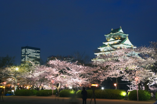 夜桜「Osaka Castle and cherry blossoms in the night, long exposure, Osaka city, Osaka prefecture, Japan」:スマホ壁紙(14)