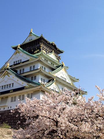 Cherry Blossoms「Osaka Castle」:スマホ壁紙(11)