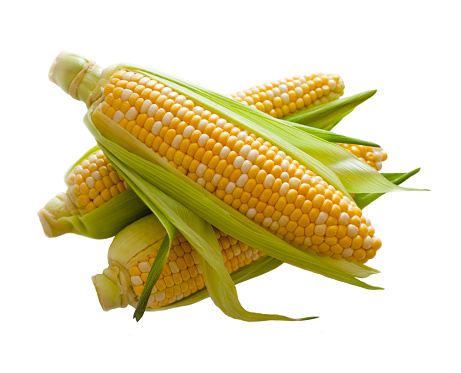 Corn「Corn」:スマホ壁紙(10)