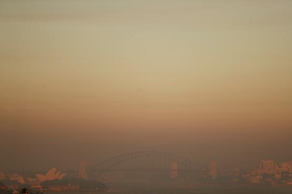 オーストラリア「NSW On High Bushfire Alert As Catastrophic Fire Danger Is Forecast」:写真・画像(15)[壁紙.com]