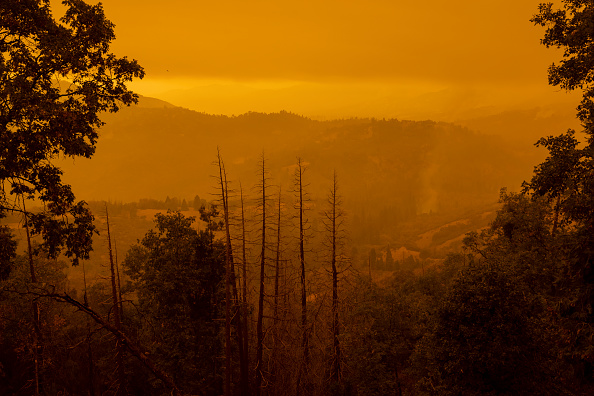Sequoia National Forest「Windy Fire Forces Evacuations In Central California」:写真・画像(8)[壁紙.com]