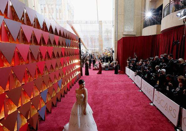 アカデミー賞「89th Annual Academy Awards - Red Carpet」:写真・画像(12)[壁紙.com]