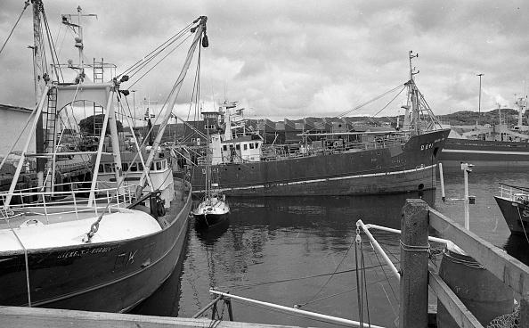 County Donegal「Killybegs Harbour 1988」:写真・画像(12)[壁紙.com]