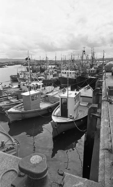Killybegs Harbour 1988:ニュース(壁紙.com)
