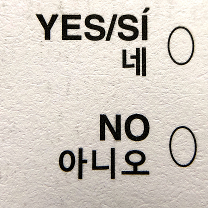 Voting Ballot「Voting choices of Yes and No on a mail-in ballot」:スマホ壁紙(2)
