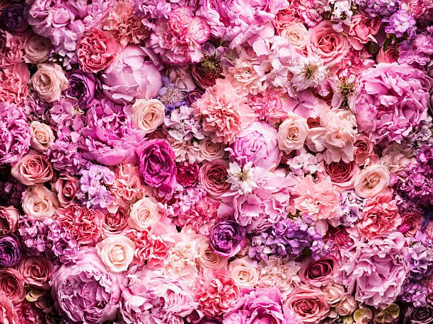 Various cut flowers, detail:スマホ壁紙(壁紙.com)