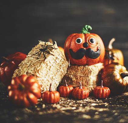 Eyesight「Pumpkin gentleman character with handmade features and monocle on straw bales」:スマホ壁紙(5)