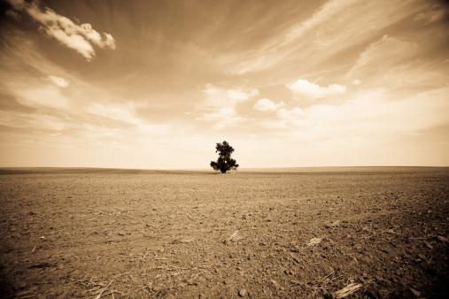 Sepia Toned「Dust Bowl: Depression on the Way?」:スマホ壁紙(11)