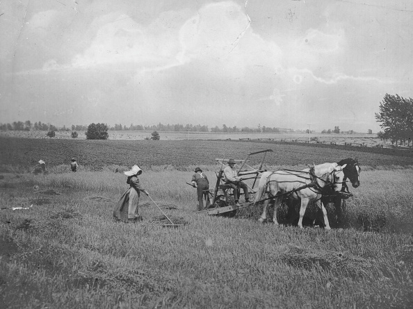 1870-1879「McCormick Reaper」:写真・画像(1)[壁紙.com]