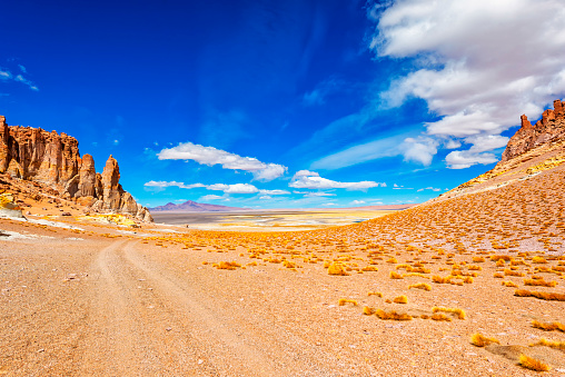 South America「Atacama desert - Andes altiplano - arid climate  - Dirty road adventure - Andes hills  - valleys- Tara salar」:スマホ壁紙(13)
