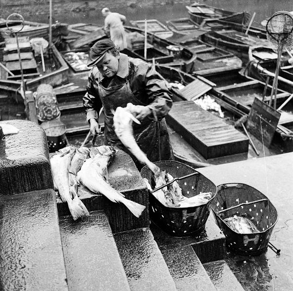 Fisherman「Danish Fisherman」:写真・画像(12)[壁紙.com]