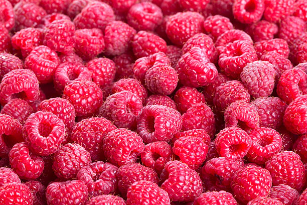 Raspberry:スマホ壁紙(壁紙.com)