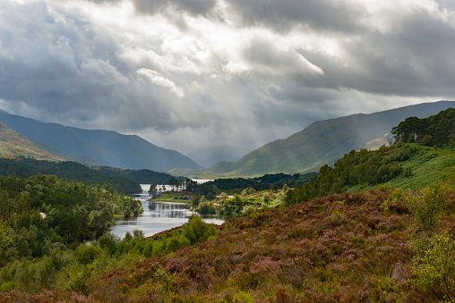 Nature Reserve「UK, Scotland, Scottish Highlands, Glen Affric, dramatic over Loch Affric」:スマホ壁紙(19)