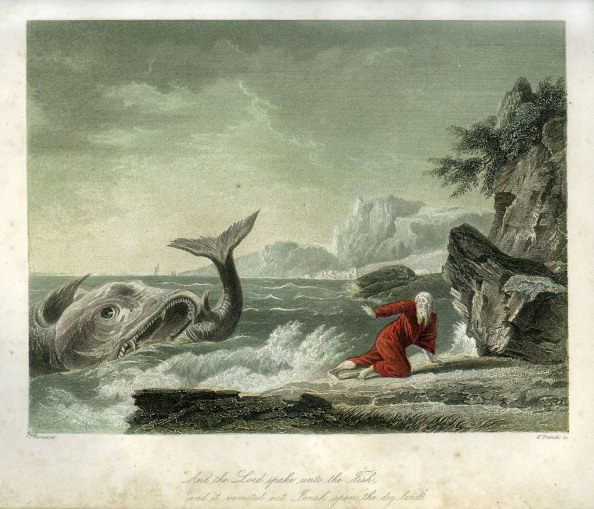 Bible「Jonah and the whale - Bible」:写真・画像(13)[壁紙.com]