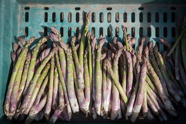 Asparagus「Asparagus Farming In Devon」:写真・画像(2)[壁紙.com]