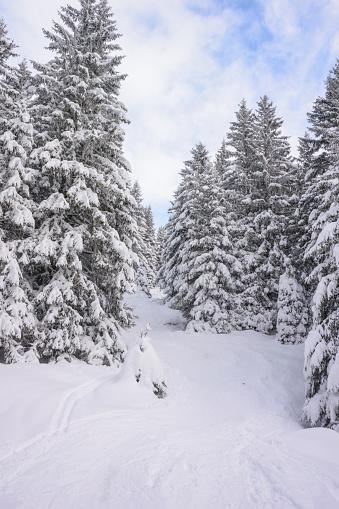 グルノーブル「Winter snowy landscape」:スマホ壁紙(11)