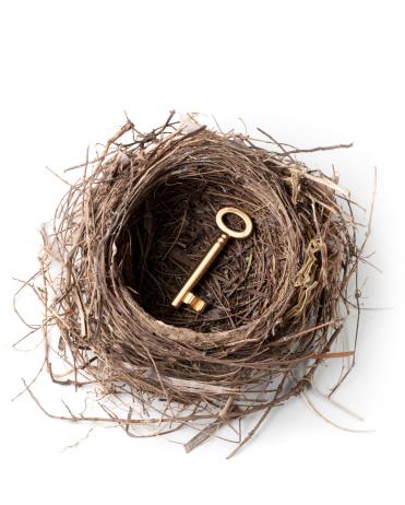 House Key「Golden key in the nest」:スマホ壁紙(13)