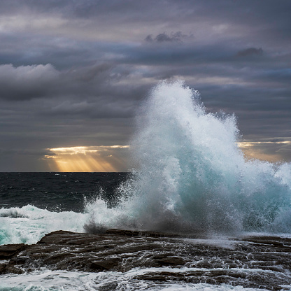 New South Wales「Australia, New South Wales, Clovelly, Shark point in the evening」:スマホ壁紙(19)