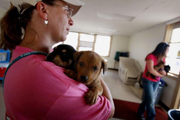 Hurricane Ike「Coastal Texas Faces Heavy Damage After Hurricane Ike」:写真・画像(9)[壁紙.com]