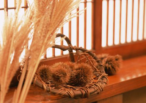 Japanese pampas grass「Chestnut」:スマホ壁紙(19)