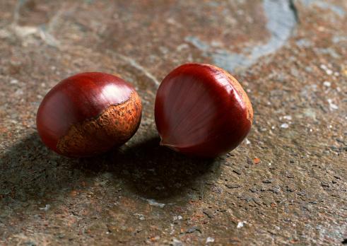 栗「Chestnut」:スマホ壁紙(16)
