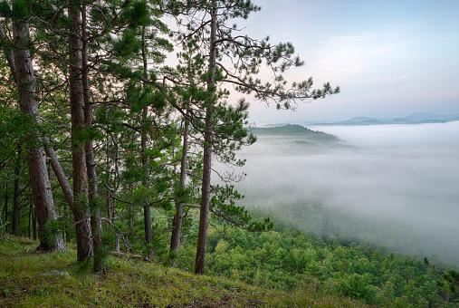 Adirondack Mountains「Mountains enshrouded in morning fog, Kipp Mountain, Adirondack Mountains, New York State, USA」:スマホ壁紙(6)