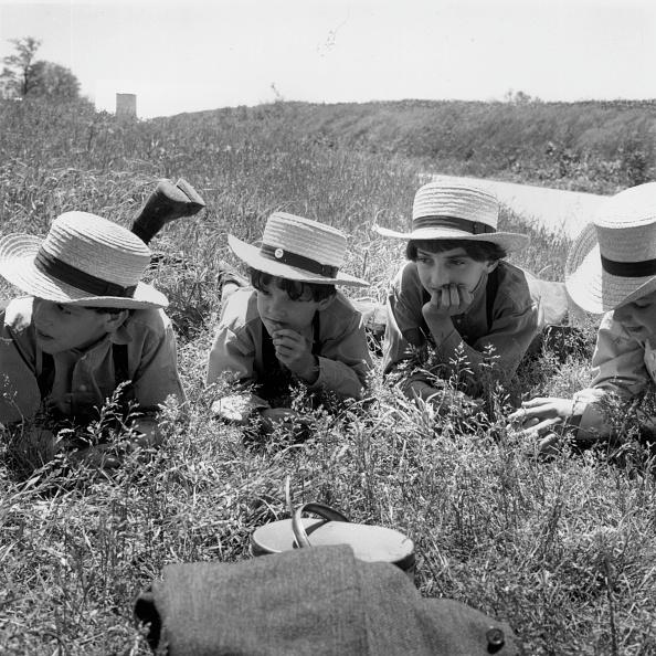Grass Family「Lunch Break」:写真・画像(8)[壁紙.com]