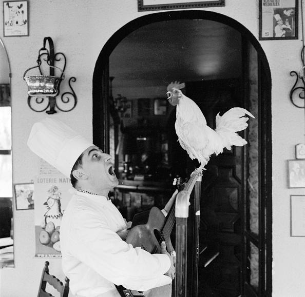 Humor「Singing Chef」:写真・画像(15)[壁紙.com]
