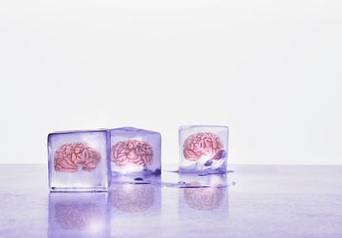 Specimen Holder「Brains frozen in ice cubes」:スマホ壁紙(0)