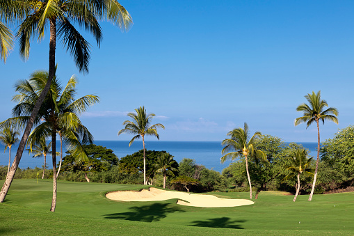 Hawaii Islands「View of tropical golf course by waterfront」:スマホ壁紙(14)
