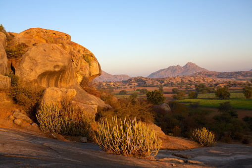 Rajasthan「Rocky hillside and landscape illuminated my golden dawn sunlight」:スマホ壁紙(19)