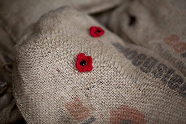 Wool「First World War Sacred Soil Arrives From Belgian」:写真・画像(3)[壁紙.com]