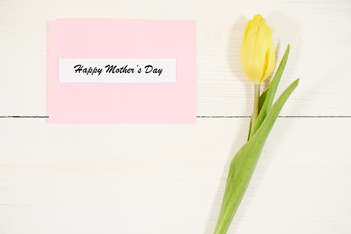 母の日「Yellow tulip next to Mothers Day card. Debica, Poland」:スマホ壁紙(1)