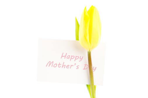 母の日「Yellow tulip with a white happy mothers day card」:スマホ壁紙(15)