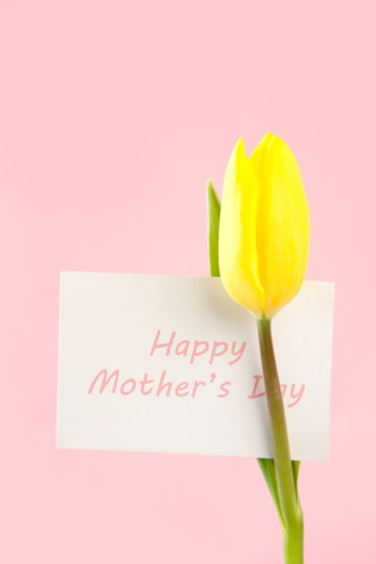 母の日「Yellow tulip with a white happy mothers day card written in pink on a pink background」:スマホ壁紙(11)