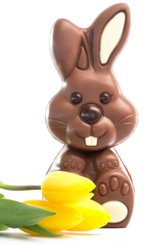 Milk Chocolate「Yellow tulips with cute chocolate bunny」:スマホ壁紙(12)
