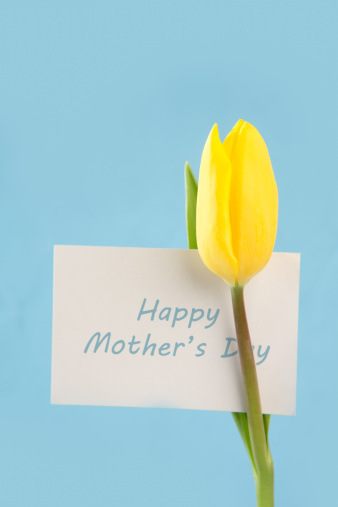 母の日「Yellow tulip with a happy mothers day card on a blue background」:スマホ壁紙(9)