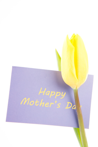 母の日「Yellow tulip with a mauve happy mothers day card on a white background」:スマホ壁紙(14)