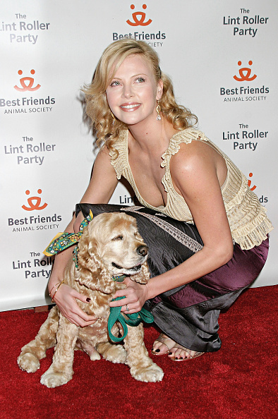 animal「The 2004 Annual Lint Roller Party - Arrivals」:写真・画像(12)[壁紙.com]