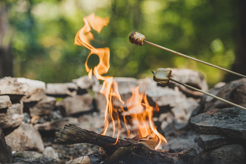 Stick - Plant Part「Roasting Marshmallows over a camp fire.」:スマホ壁紙(9)