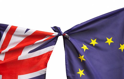 Democracy「Brexit flags」:スマホ壁紙(14)
