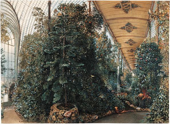 Greenhouse「Conservatory Castle Lednice」:写真・画像(4)[壁紙.com]