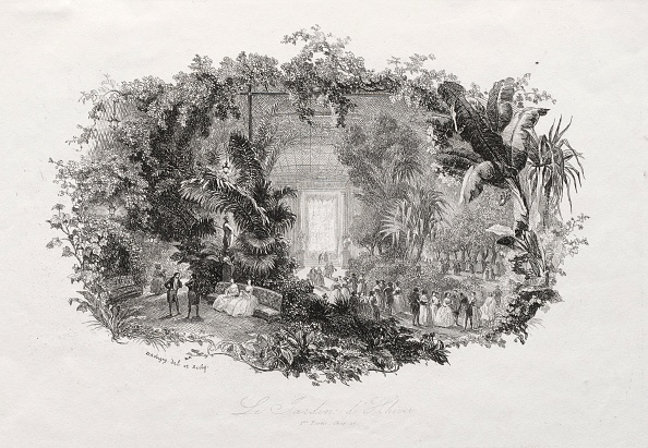 Etching「The Winter Garden」:写真・画像(11)[壁紙.com]