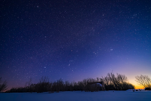 Canis Minor「The winter sky with Orion setting into the west in the evening twilight, Alberta, Canada.」:スマホ壁紙(3)