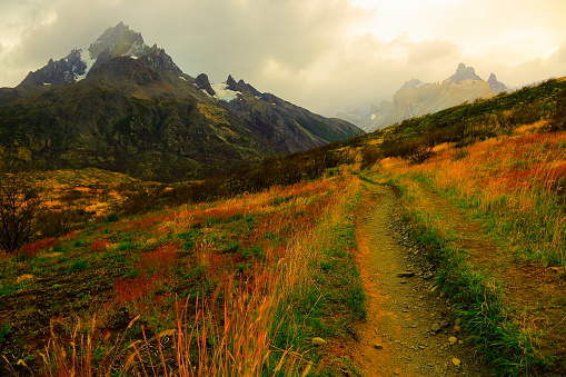 Steppe「Horns of Paine dramatic sunrise, estepe trail, Torres Del Paine – Patagonia」:スマホ壁紙(13)