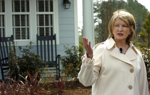 Human Arm「Martha Stewart Unveils Her First Fully-Designed Homes」:写真・画像(19)[壁紙.com]