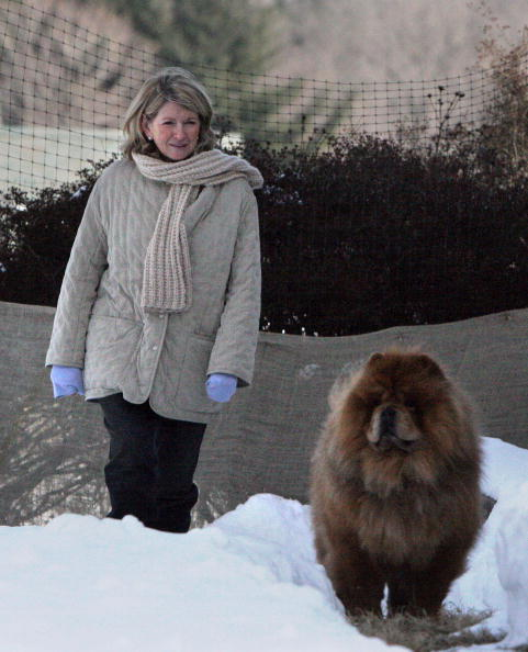 Diva - Human Role「Martha Stewart Starts Home Confinement」:写真・画像(13)[壁紙.com]