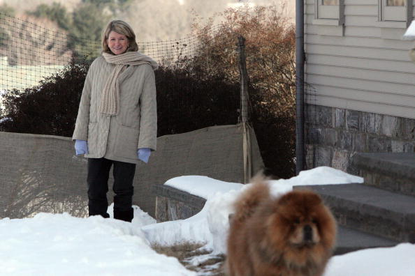 Diva - Human Role「Martha Stewart Starts Home Confinement」:写真・画像(12)[壁紙.com]