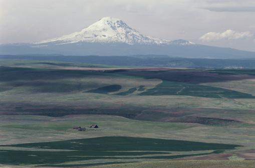 アダムス山「Farmlands and Mt. Adams, Washington」:スマホ壁紙(18)