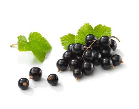 Black currant「Blackcurrant 束 Leafs 付き」:スマホ壁紙(2)
